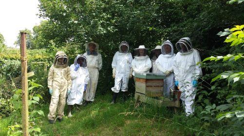 Dicklebees Members on Bee Safari July 2016